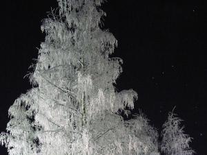 vinternatt1